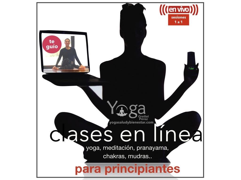 yoga para principiantes en línea
